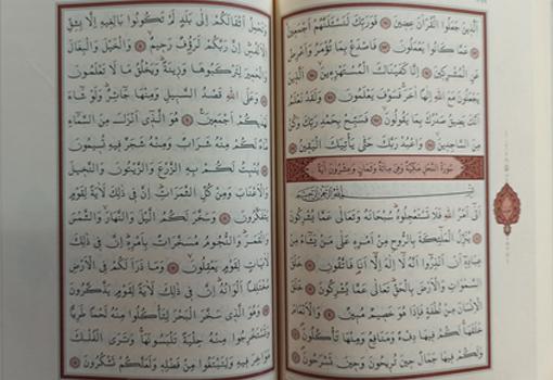 Kur'an-ı Kerim (Hafız Boy, Şamua)